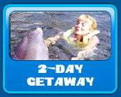 2 day Dolphin vacations