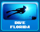 Diving in Florida