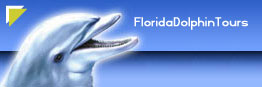 Florida Dolphin Tours Home Page